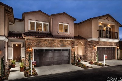 Chino Hills Condo/Townhouse For Sale: 15360 Orchid Circle