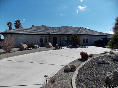 Hesperia Single Family Home For Sale: 11663 Pinon Avenue