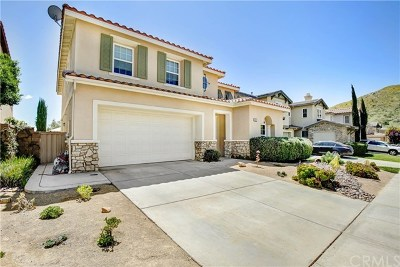 Lake Elsinore Single Family Home For Sale: 35429 Coyote Creek Court