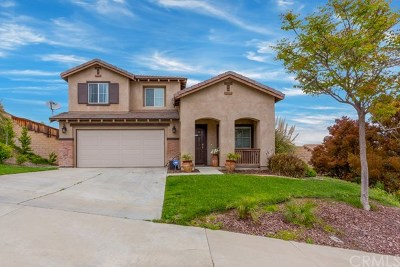 Lake Elsinore Single Family Home For Sale: 29129 Sunswept Drive