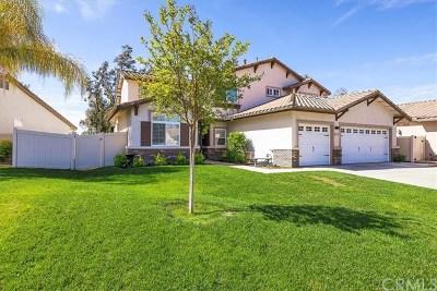 Temecula Single Family Home For Sale: 41921 Corte Valentine