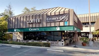 Orange County Commercial For Sale: 7446 E Chapman Avenue