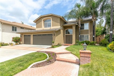 Orange County Single Family Home For Sale: 2874 Longspur Drive