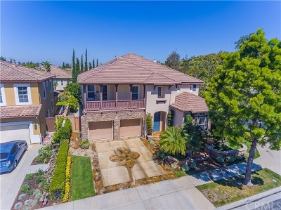 Irvine Single Family Home For Sale: 9 Dandelion