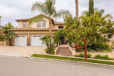 Corona Single Family Home For Sale: 4114 Long Cove Circle