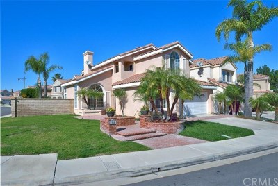 Anaheim Hills Rental For Rent: 744 S Morningstar Drive