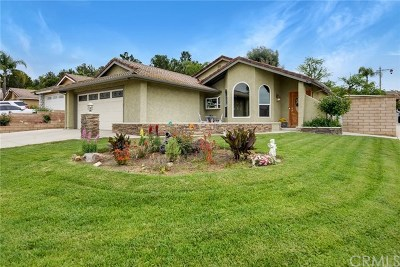 Anaheim Hills Single Family Home For Sale: 8400 E Foothill Street