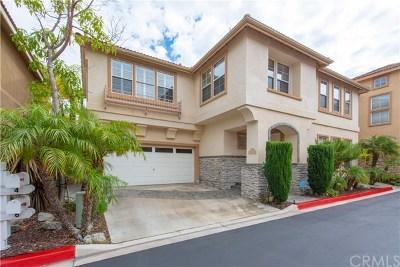 Aliso Viejo Single Family Home For Sale: 4 Leon