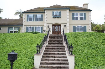 West Covina Single Family Home For Sale: 1325 S Sandy Hill Drive