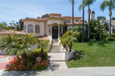 San Juan Capistrano Single Family Home For Sale: 30081 Saddleridge Drive