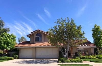 Orange Single Family Home For Sale: 6410 E Waterton Avenue