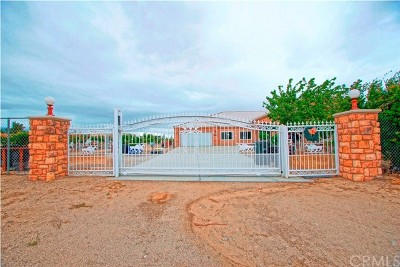 Phelan Single Family Home For Sale: 13830 Paramount Rd