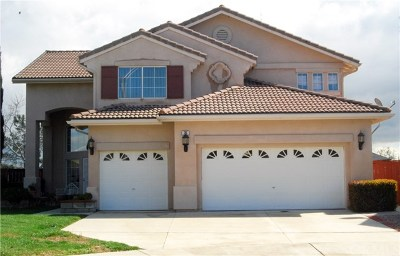 Lake Elsinore Single Family Home For Sale: 20 Ponte Fiera