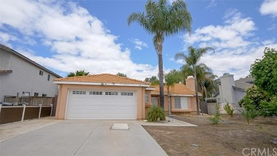 Lake Elsinore Single Family Home For Sale: 32851 Winnepeg Place
