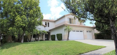 Corona Single Family Home For Sale: 1989 Olympia Fields Drive