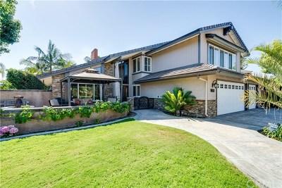 Brea Single Family Home For Sale: 155 S Flower Hill Street