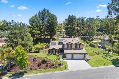 Anaheim Hills Single Family Home For Sale: 270 S Old Bridge Road
