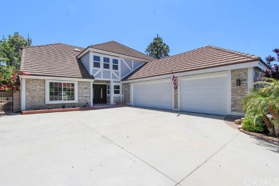 Anaheim Hills Single Family Home For Sale: 342 S Silverbrook Drive