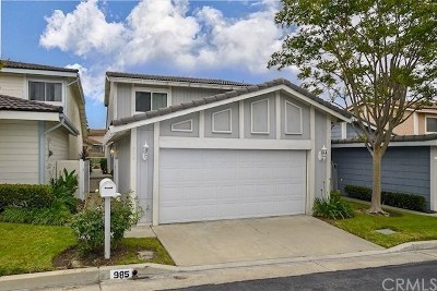 Anaheim Hills Single Family Home For Sale: 985 S Park Rim Circle
