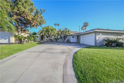 Placentia Single Family Home For Sale: 250 Patrician