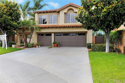 Laguna Niguel Single Family Home For Sale: 23321 Vista Carillo
