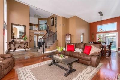 Yorba Linda Single Family Home For Sale: 5045 Vista Montana