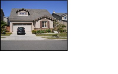Corona Single Family Home For Sale: 25003 Coral Canyon Road