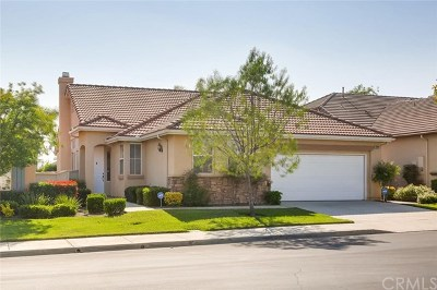 Menifee Single Family Home For Sale: 29233 Hidden Lake Drive