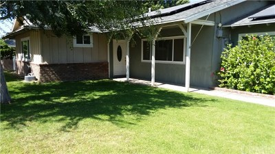 Norco Single Family Home For Sale: 4251 Valley View Avenue