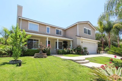 Corona Single Family Home For Sale: 2975 Mangular