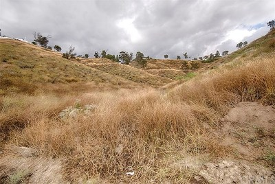 Lake Elsinore Residential Lots & Land For Auction: Lake View Avenue