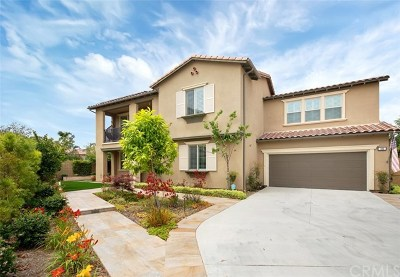 Irvine Single Family Home For Sale: 101 Sabiosa