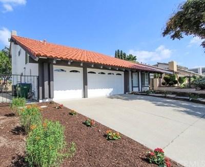 Irvine Single Family Home For Sale: 4091 Blackfin Avenue