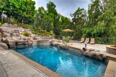 Anaheim Hills Single Family Home For Sale: 331 S Yorkshire Circle