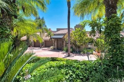Villa Park CA Single Family Home For Sale: $2,349,000