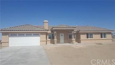 Phelan Single Family Home For Sale: 11025 Clovis Road