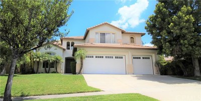 Corona Single Family Home For Sale: 1989 Olympia Fields Drive