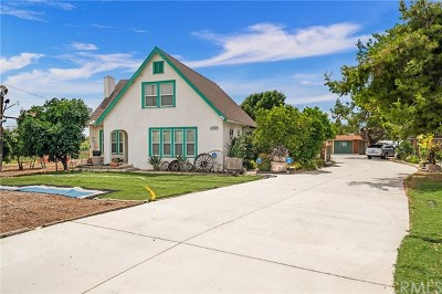 Chino Single Family Home For Sale: 11528 Monte Vista Avenue
