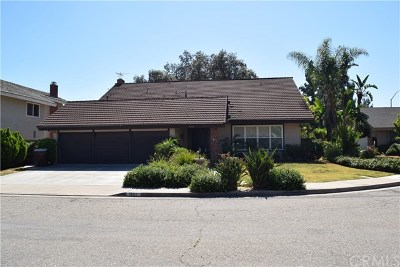 Placentia Single Family Home For Sale: 1831 Geeting Place