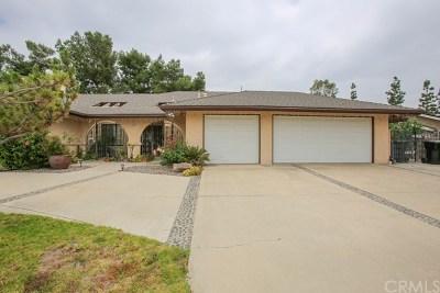 Placentia Single Family Home For Sale: 1068 Promenade Avenue