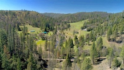 Mariposa County Single Family Home For Sale: 8692 Bull Creek Road