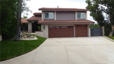 Anaheim Hills Single Family Home For Sale: 193 S Donna Court