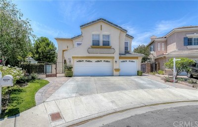 Anaheim Hills Single Family Home For Sale: 915 S Canyon Heights Drive