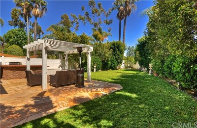 Laguna Niguel Single Family Home For Sale: 12 Dunn Street