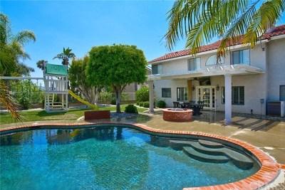 Yorba Linda Single Family Home For Sale: 5540 Camino Vista