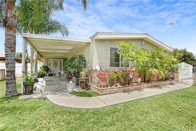 Rialto Single Family Home For Sale: 2860 W Walnut Street