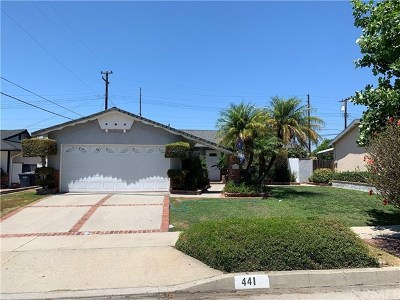 La Habra Single Family Home For Sale: 441 Wilson Street