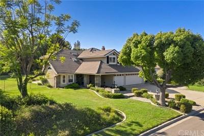 Yorba Linda Single Family Home For Sale: 21095 Ridge Park Drive