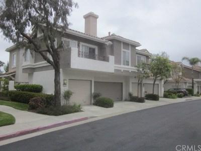 Anaheim Hills Rental For Rent: 1095 S Sundance Drive