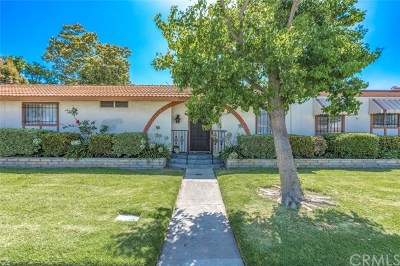 Anaheim Single Family Home For Sale: 2166 S Euclid Street